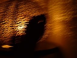 Iride Tredici_2.Danza